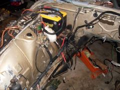 78 Z car (232)  harness cleaned up