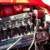 Speedtripper